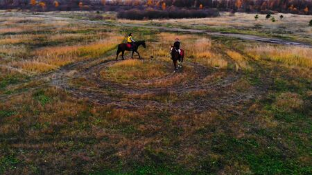 Horses with equestrians are going in circle on the field Фото со стока