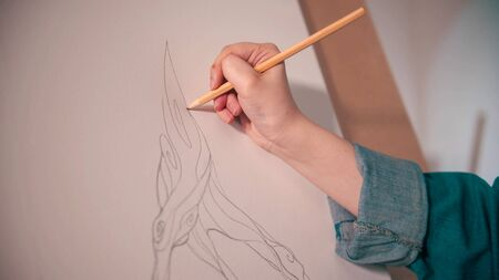 A young woman sketching an abstract tree on the canvas using pencil