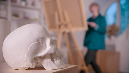 A young woman artist in the art studio drawing a skull 写真素材