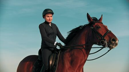 Riding a horse - young woman equestrian riding a brown horse outdoors