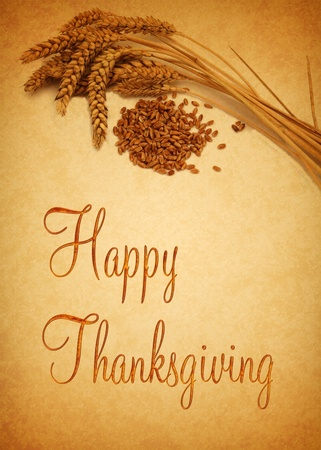 Thanksgiving Greetings, illustration with wheat