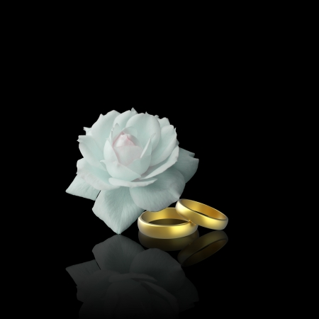 White Rose and Golden Rings