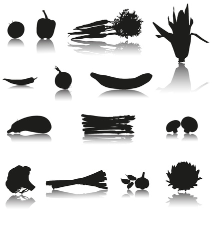 Set of 14 Silhouette vector vegetables with shadow  Tomato, paprika, carrots, chilli, cucumber, onion, corn, mushroom, asparagus, eggplant, garlic, broccoli, leek and artichoke  Vector