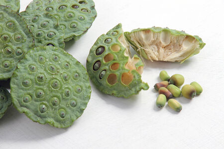 extensively: The lotus seeds are used extensively in traditional Chinese medicine and desserts  Stock Photo