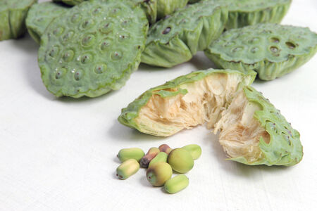 The lotus seeds are used extensively in traditional Chinese medicine and desserts  photo