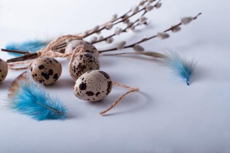 Easter quail eggs on white background