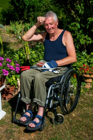 paraplegia: Retired person in a wheelchair starts to sweat during gardening  Stock Photo