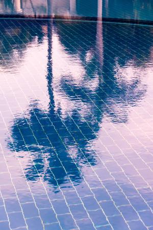 palmier: Carrelage bleu d'une piscine sous l'eau claire, o� ciel et de palmiers sont refl�t�s