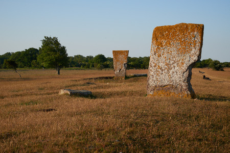 megaliths: Megaliths and black sheeps, Isle if Oeland, province Kalmar, Sweden Stock Photo