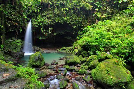 Emerald Pool Wasserfall in Dominica. Standard-Bild - 10378261
