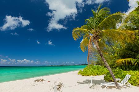 7 Meile Strand, Grand Cayman Standard-Bild - 30934424