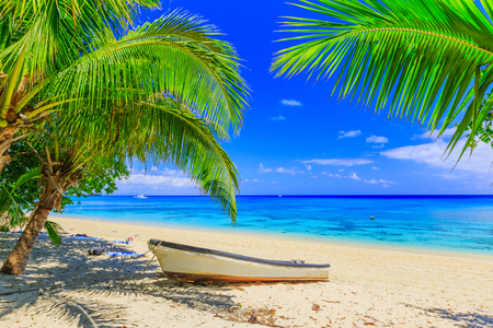 Dravuni Island, Fiji. Beach, boat and palm trees in the South Pacific ocean.