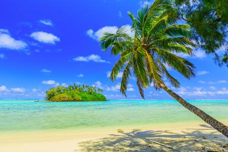 여행: 라로 통가, 쿡 제도. 모투 섬과 팜 나무, Muri의 라군. 스톡 콘텐츠
