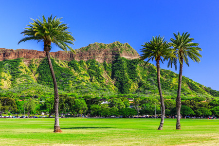 Honolulu, Hawaii. Diamond head crater and palm trees. Foto de archivo