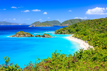 the bay: Caribbean,Trunk Bay on St John island, US Virgin Islands