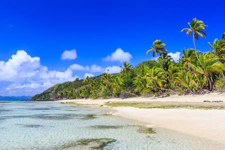 Dravuni Island, Fiji. Beach and palm trees in the South Pacific ocean.