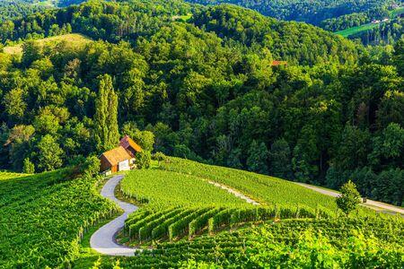 Spicnik, Maribor, Slovenia. Famous Heart shaped wine road.