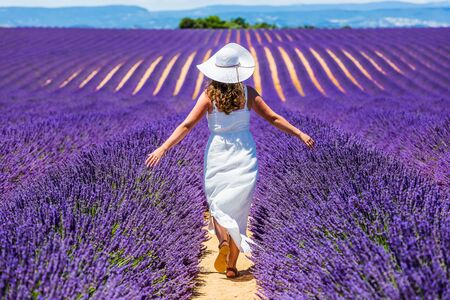 Provence, France. A girl in white dress walking trough lavender fields. 写真素材