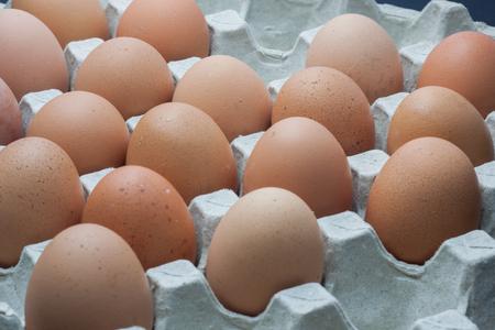 Fresh organic panel eggs Stock Photo