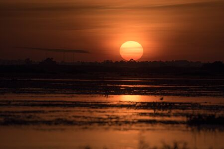 The sun rising beautifully at the marshes.