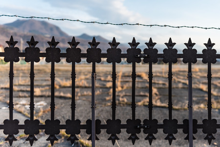 iron defense: security steel fence