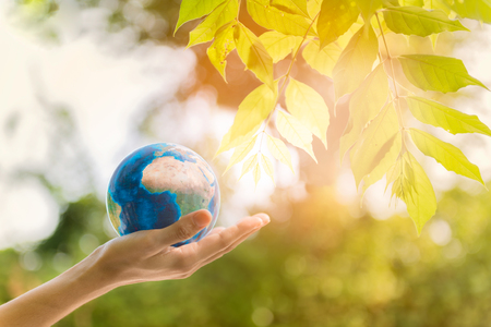 Holding earth planet in the hand with tree and against green spring background. Corporate Social Responsibility or CSR concept. Elements of this image furnished by NASA