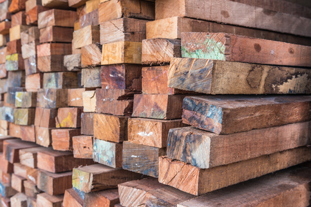 Timber for construction work Stockfoto - 123068317
