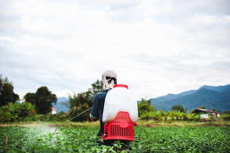 Farmer spraying of pesticide on Chili plantation 免版税图像