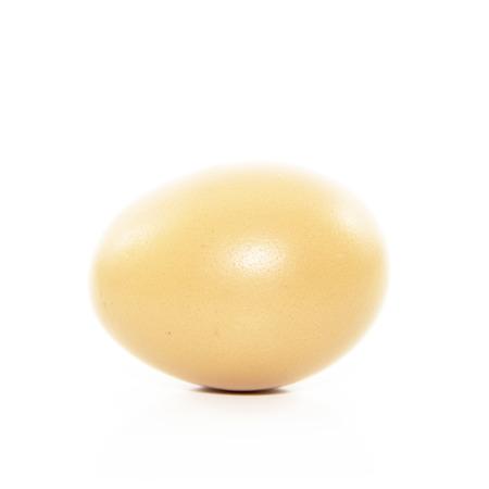 ing: Fresh egg from organic farm on white background