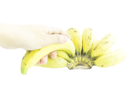 ripened: Over ripened bananas with hand pick on white background