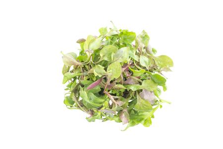 berros: Mezcla de la ensalada de berros ingrediente vista superior sobre fondo blanco Foto de archivo