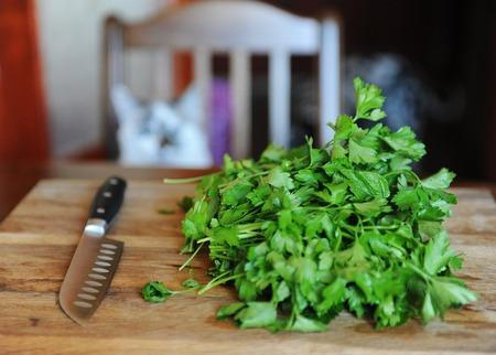 Verse greens op een houten snijplank, mes met zwart handvat. Witte kattenkok op de achtergrond Stockfoto