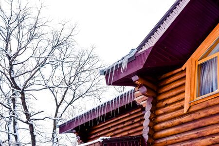houses made of wood in a winter park