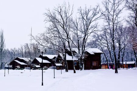 walking people in the winter park with houses made of logs