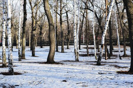 the beginning of spring in the Park, the snow began to melt and thawed