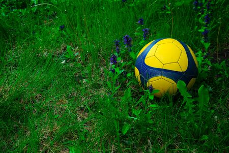 blue and yellow soccer ball in the tall grass Фото со стока