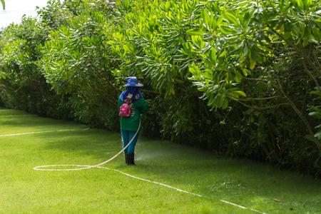 Gärtner Bewässerung des Gartens am sonnigen Tag Standard-Bild - 93063030