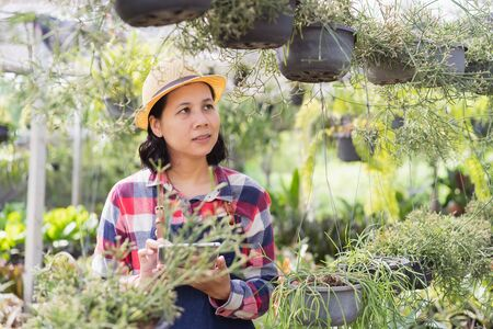 Asian woman is using a tablet to check the vegetation in the Ornamental plant shop, Small business concept Reklamní fotografie
