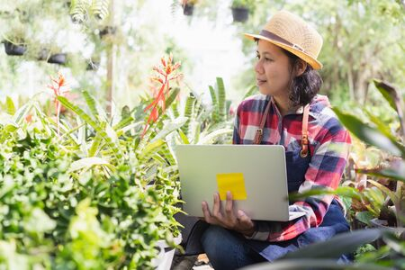 Asian woman is using a laptop to check the vegetation in the Ornamental plant shop, Small business concept