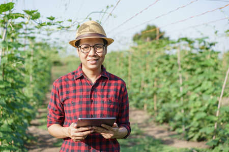 Portrait of Asian farmer woman wearing glasses  while standing holding the tablet in the garden agricultural, Asia women happy and smile at sunlight and looking to camera Standard-Bild