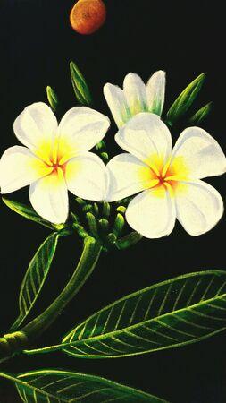 white: White flower Lee La Wa Dee