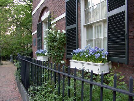 brownstone: Beautiful white flower boxes next to shuttered windows of brownstone on Bostons Beaccon Hill.