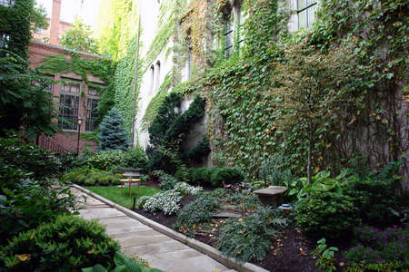 A lush boston garden in the fancy part of town, full and eclectic garden with path way leading to house Stock Photo - 574862