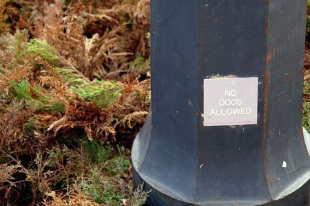 basis van de paal met een bord dat zegt dat er geen honden toegestaan