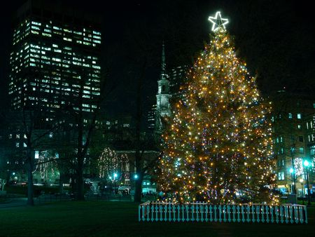 Bostons Official Christmas Tree located in the Boston Commons with the park street chusrch in the background and an office building photo