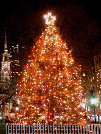 Bostons Official Christmas Tree located in the Boston Commons with the park street chusrch in the background and an office building