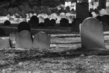 blank tombstones lit by the winter sun in the granary cemetery
