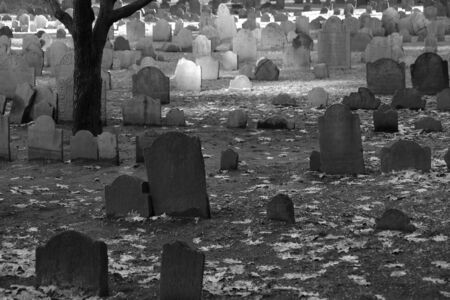 mingle: old tombstones mingle with the fallen leaves on a winters day in the granary cemetery in boston massachusetts