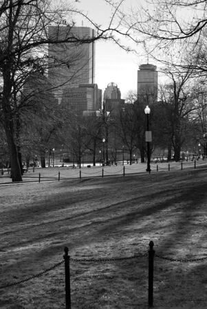 boston common: boston common in early spring in black and white showing famous boston skyline