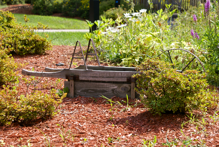 over grown: old over turned wheelbarrow in over grown garden Stock Photo